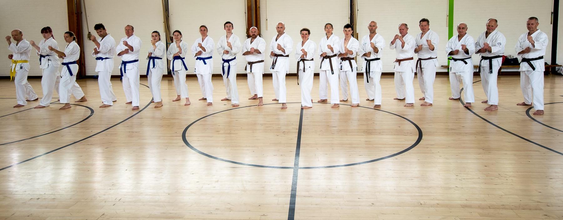 Wado-Ryu Karate Do Ju-Jutsu Kempo martial arts classes in Aldershot, Farnham, Guildford & Haslemere