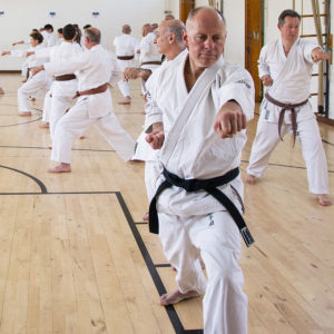 Wado-Ryu Karate Do Ju-Jutsu Kempo beginners karate classes in Aldershot, Farnham, Guildford & Haslemere