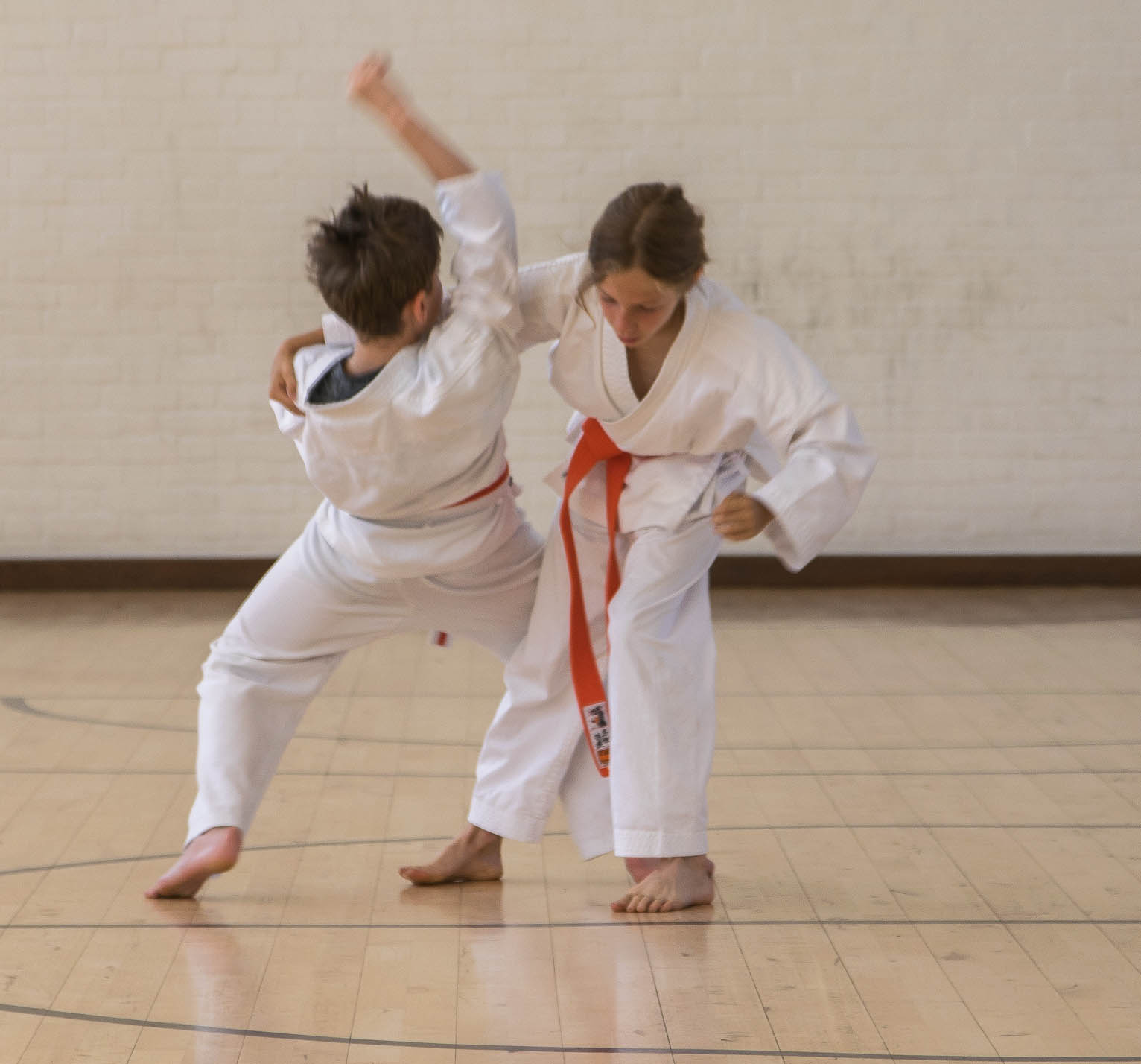 ladies-karate About Our Club