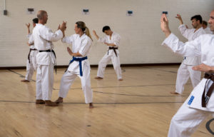 Wado-Ryu Karate Do Ju-Jutsu Kempo martial arts classes in Surrey and Hampshire
