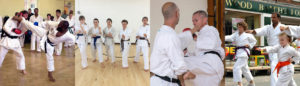 About Surrey Karate Academy Club
