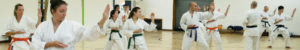 Frequently asked questions about Surrey karate academy